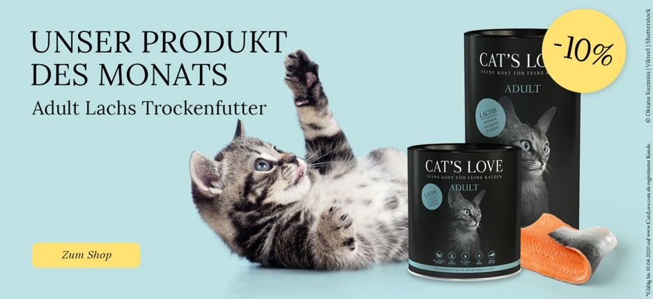https://www.catslove.com/shop/trockenfutter-adult-lachs-katze